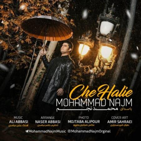 محمد نجم چه حالیه
